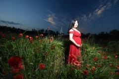 grossesse-photographe-toulouse-exterieur-fleursjpg