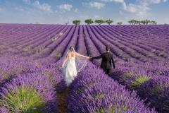 1_photographe-mariage-champs-de-lavande-valensole-GB-studiophoto.com_