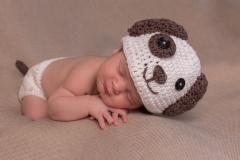1_balma-photographe-naissance-original-deguise-GB-studiophoto.com_